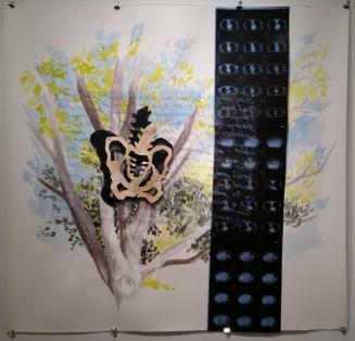 NOVEMBER, 2014. Watercolor, vinyl overlay, CT scan , crayon. 45 x 48 in.